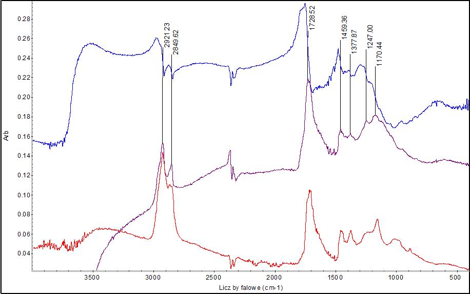 Widma bursztynu zarejestrowane w sposób nieinwazyjny (niebieskie), transformacja Kramersa-Kröniga tego widma (fioletowe) oraz widmo ATR zarejestrowane dla niewielkiej próbki (czerwone).